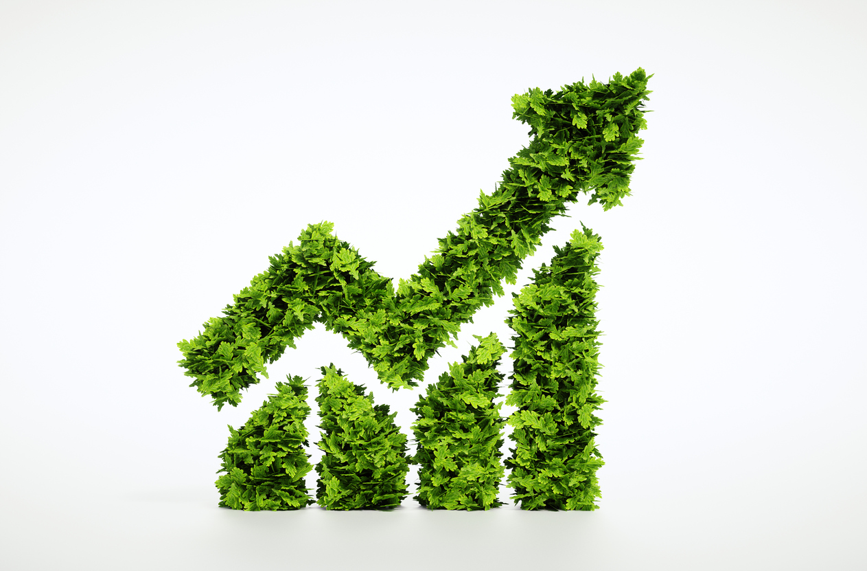 Is 'socially responsible investing' just a trend, or a profitable and smart  way to invest? Here are the basics on what makes an investment socially ...