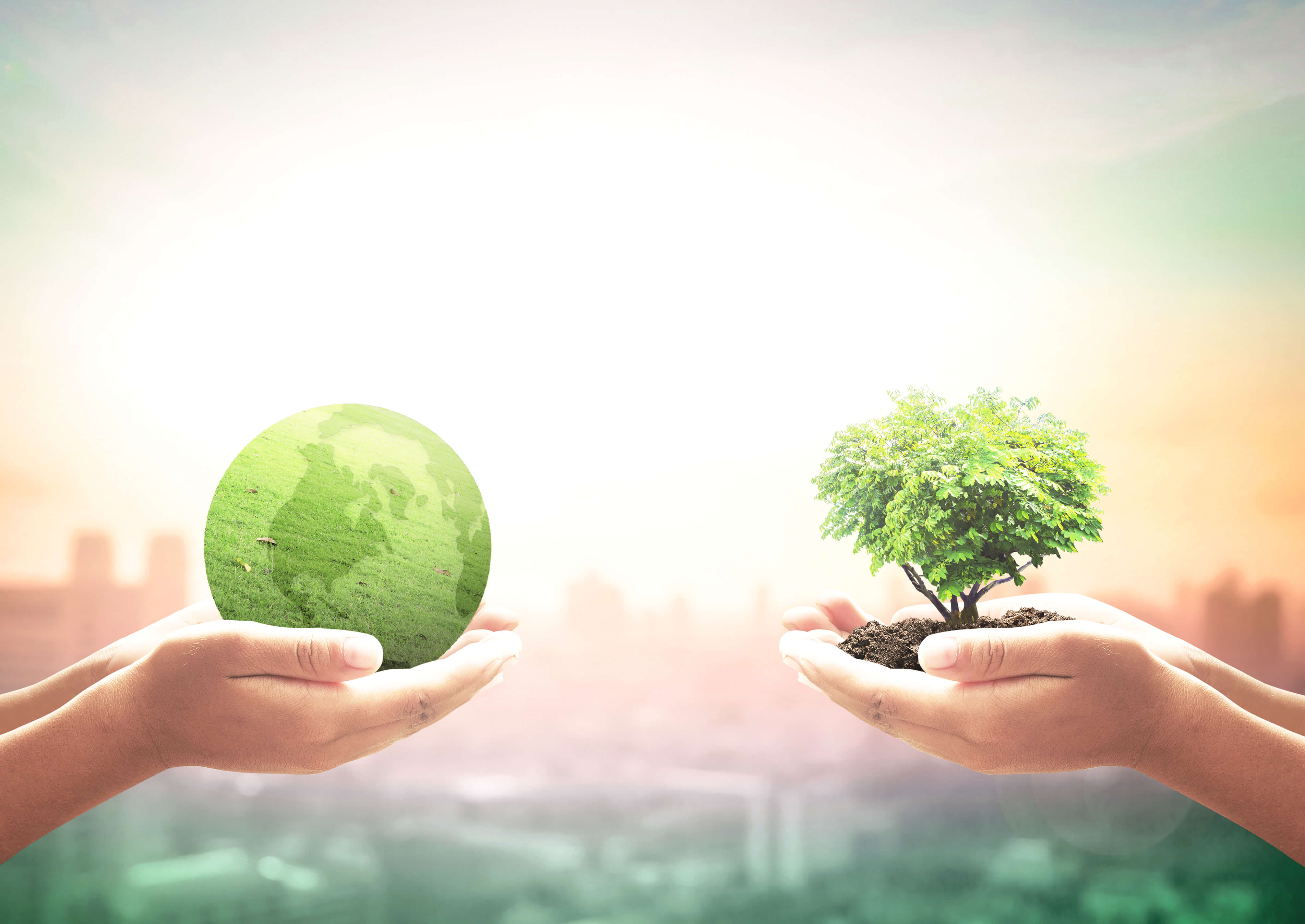Socially responsible investing: Investing for the future